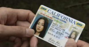 Dịch vụ đổi bằng lái xe Mỹ sang Việt Nam